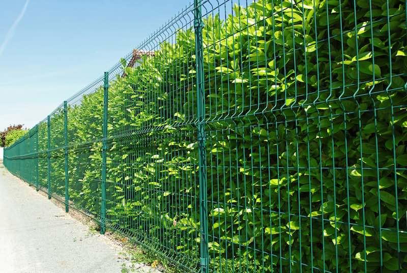 Panele ogrodzeniowe ozdobne