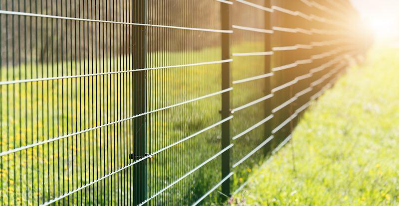 Panel ogrodzeniowy 2d 02