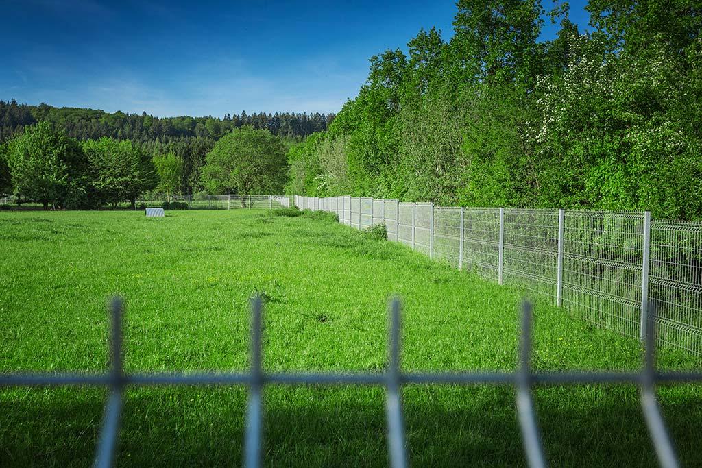 Tanie panele ogrodzeniowe to dobry wybór